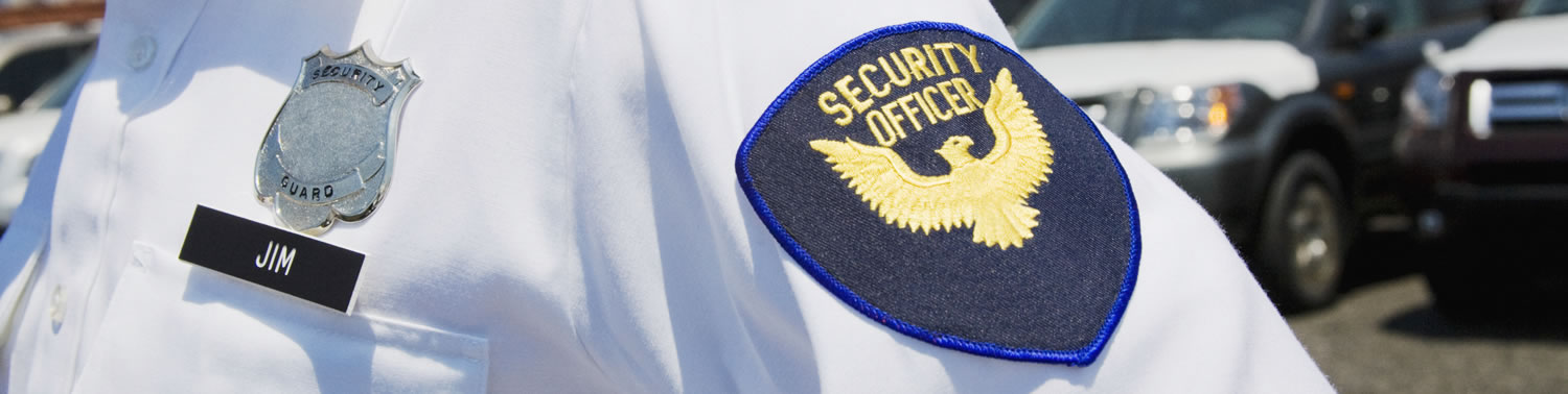 Security and Investigations
